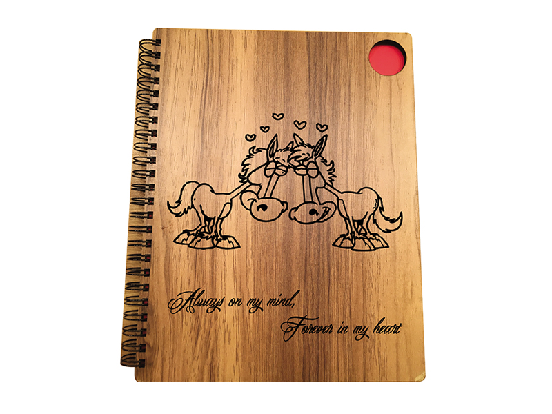 Woodpecker Notebook Always and Forever